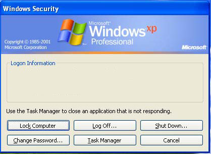 Windows Security Form